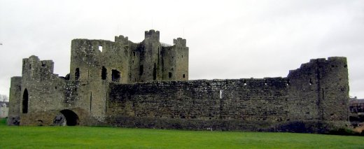 Trim Castle present