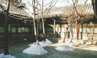 Courtyard in Dajingchang Huton